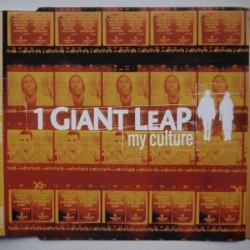 1 Giant Leap feat. Robbie...