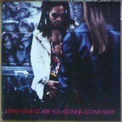 Lenny Kravitz - Are You...